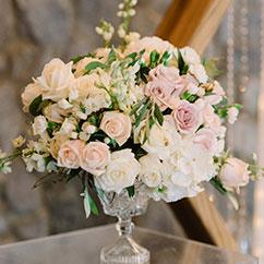Les plus belles roses du jardin