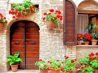 fleurs murs et niches